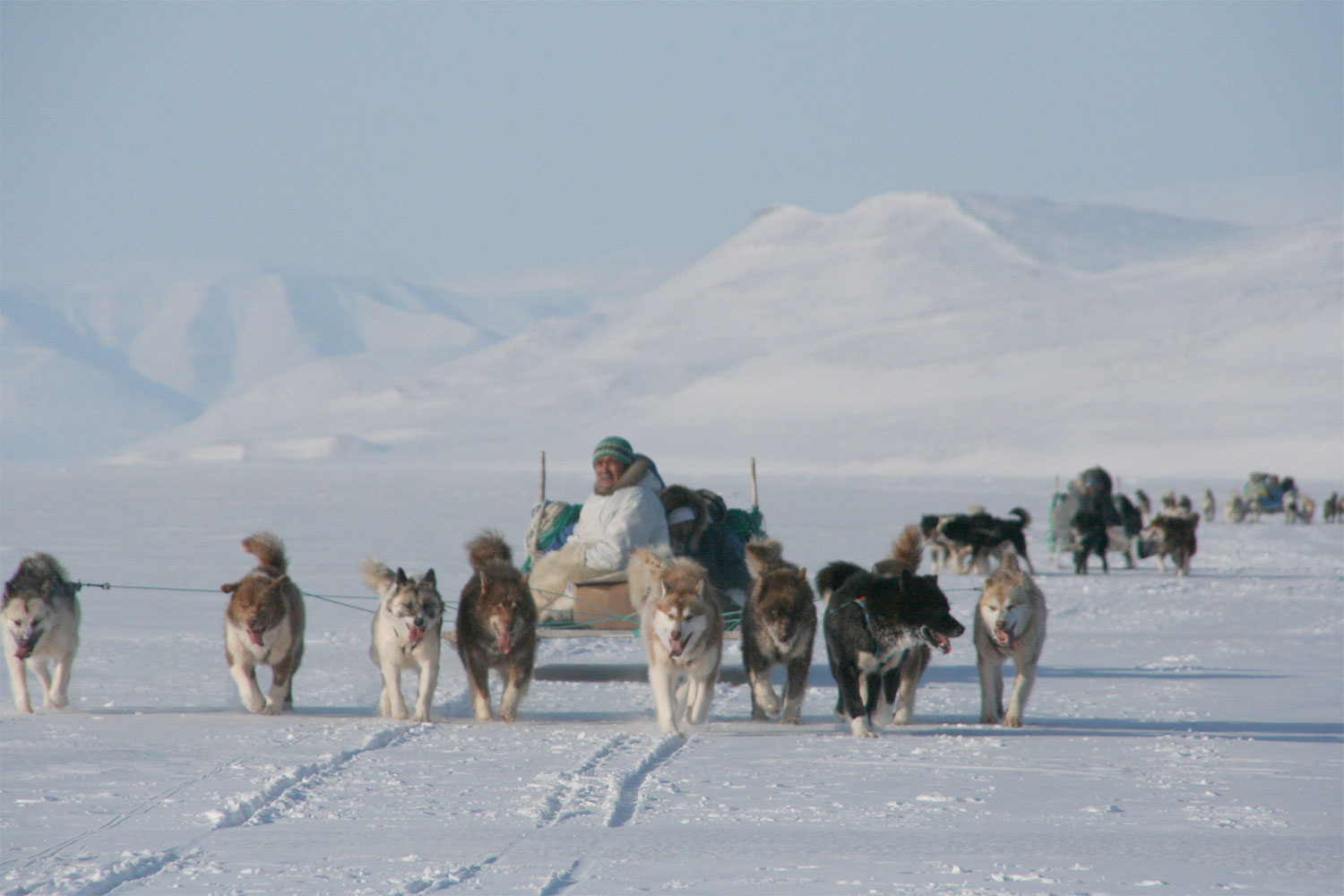(Photo: Andy Mahoney) For transportation, people in the arctic often travel by sled pulled by a pack of huskies.