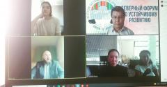 Third online meeting with the Chair of the Northern Forum, Governor of Lapland, Mika Riipi