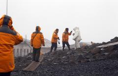 ЯНАО, Мурманская и Архангельская области стали лидерами по турпотоку в арктических регионах России