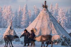 Reindeer courses were opened for yamal students